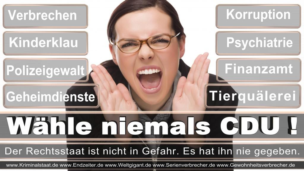 Bundestagswahl-2017-CDU (110)