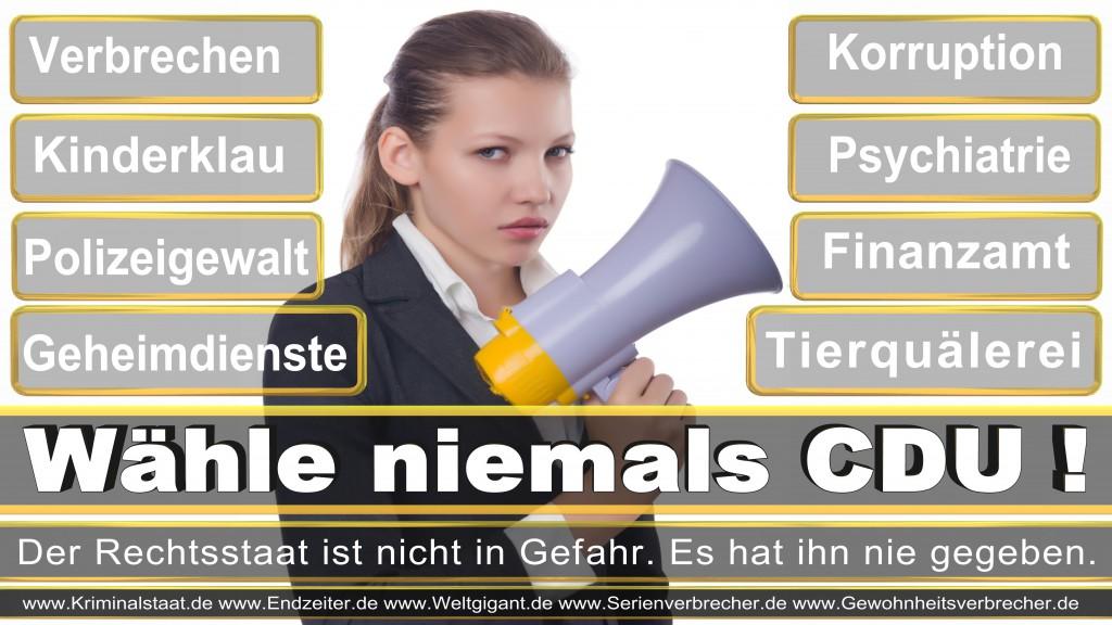 Bundestagswahl 2017 CDU SPD FDP Grüne Linke AfD Piratenpartei NPD Stimmzettel Datum Angela Merkel Frank-Walter Steinmeier Sigmar Gabriel, Joachim Gauck  Umfrage Prognose Termin