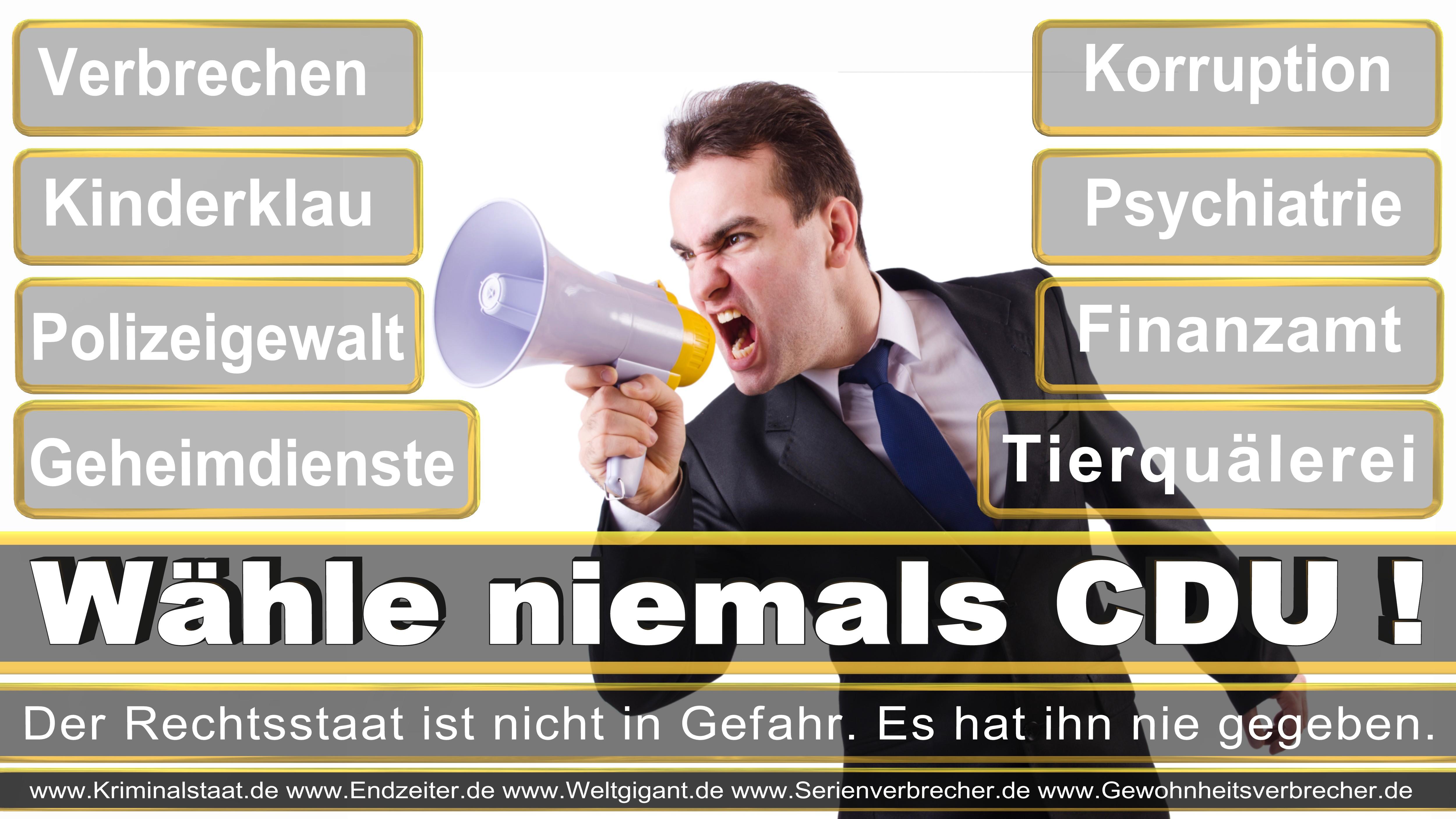 Bundestagswahl 2017 CDU SPD FDP Grüne Linke AfD Piratenpartei NPD Stimmzettel Datum Umfrage Prognose Termin
